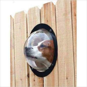 Fence Window for Pets